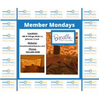 MEMBER MONDAYS: BREATHE SALT &SAUNA