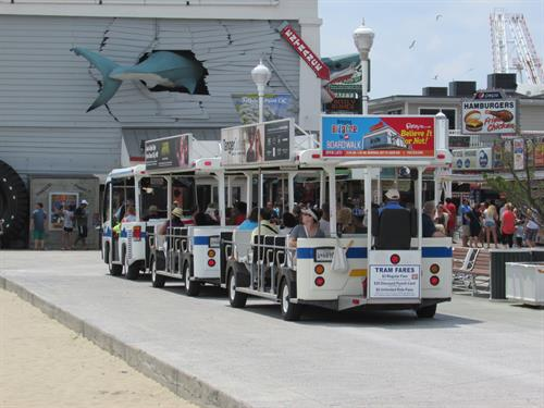Tram Advertising