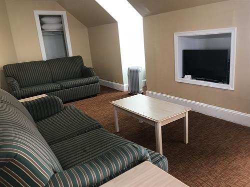Deluxe 1 BR APT - Living Room