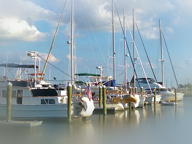 Enjoy the conrete floating transient pier close to bathouses, laundry, pool and the marina office.