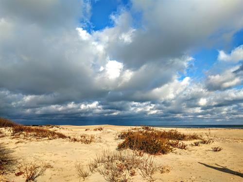 A beautiful day in Assateague... only minutes from your beach