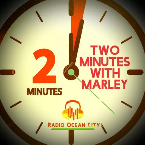 Stay update with 2 minutes with Marley