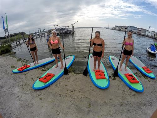 Enjoy the back bays on a brand new paddle board