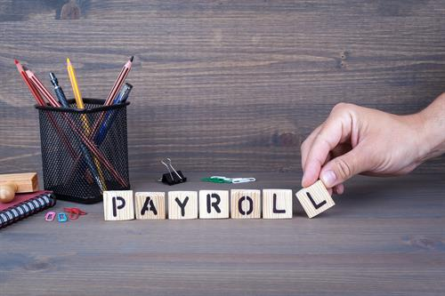 Payroll provider for small businesses