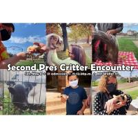 A CRITTER ENCOUNTER