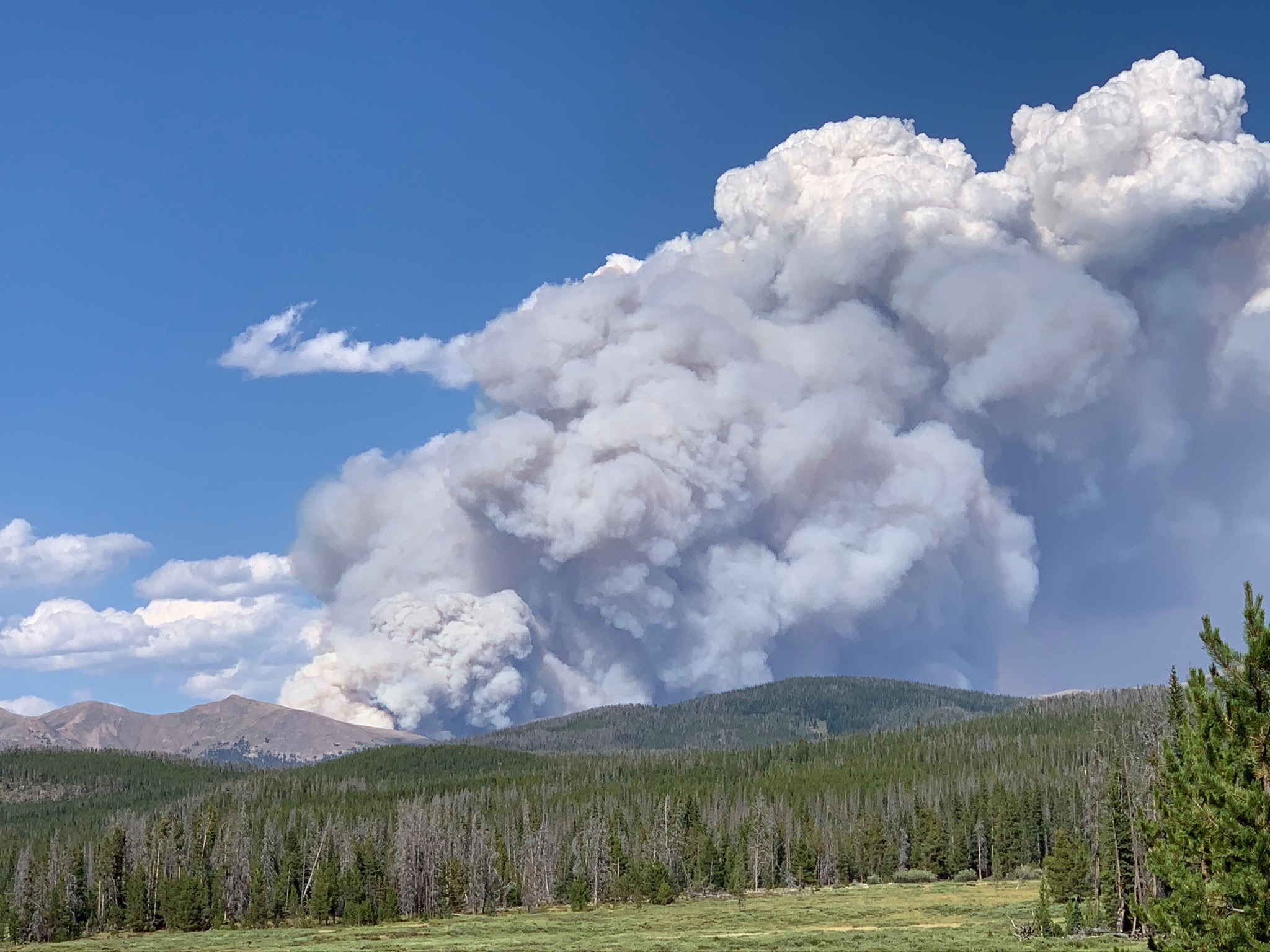 Image for Wildfire Resources