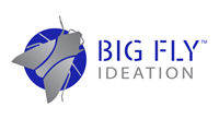 Big Fly Ideation