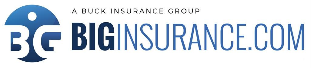 Biginsurance.com