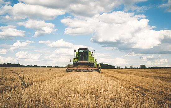 Farming, Agriculture & Agritourism
