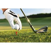 26th Annual Tecumseh Area Chamber of Commerce Golf Outing