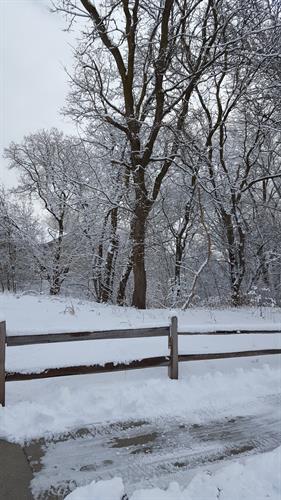 Winter at Felician Village