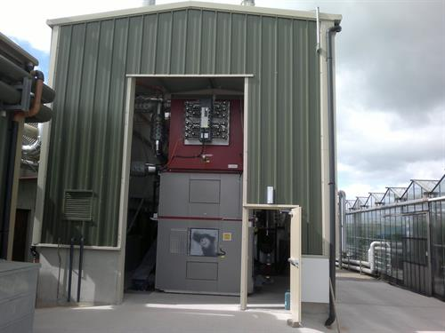 Biomass Boiler Wexford Tomatoes