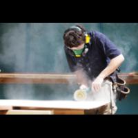 Extension of Apprenticeship Incentivisation Scheme for employers – Cummins