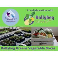 Ballybeg Green Vegetable Boxes
