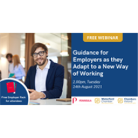Guidance for Employers as they Adapt to a New Way of Working
