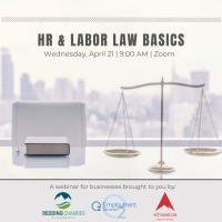 HR & Labor Law Basics