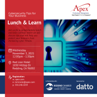 Cybersecurity Tips For Your Business Lunch & Learn