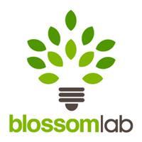 Blossom Lab Marketing - Redding