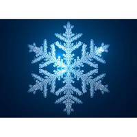 CAMBRIDGE LIGHTED SNOWFLAKE PARADE