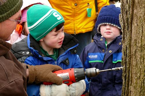 Maple Tapping is a time honored tradition at Tollgate.