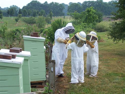 Participants of a beekeeping class get up close with a beehive.