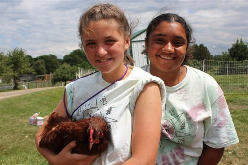 Chickens, goats, sheep, cows, and horses are some of the animals campers interact with daily.