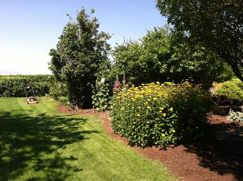 The English Gardens are a lovely place to have a stroll and enjoy the sights of the surrounding area. Barrows.