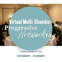 Virtual Multi-Chamber Progressive Networking