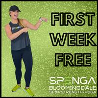 SPENGA - Bloomingdale