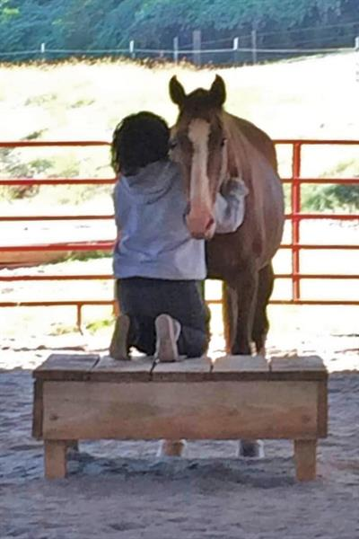 Client working with therapy horse Scout as she seeks healing