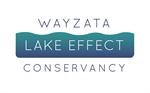 The Wayzata Conservancy