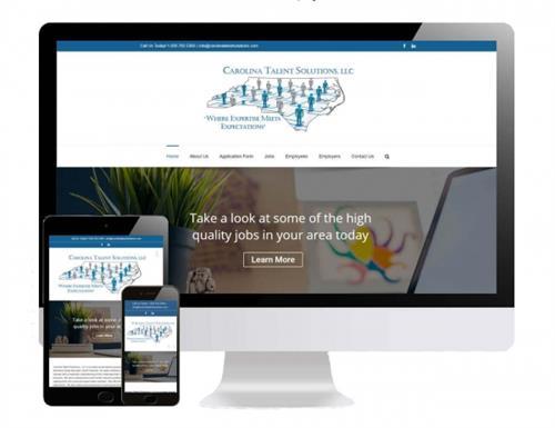 Carolina Talent Solutions Portfolio Image
