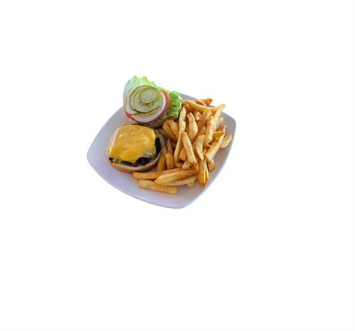 Terry's Famous Double Cheeseburger and Fries!