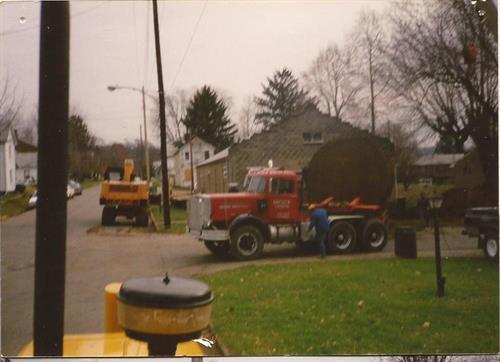 1984 McConnelsville