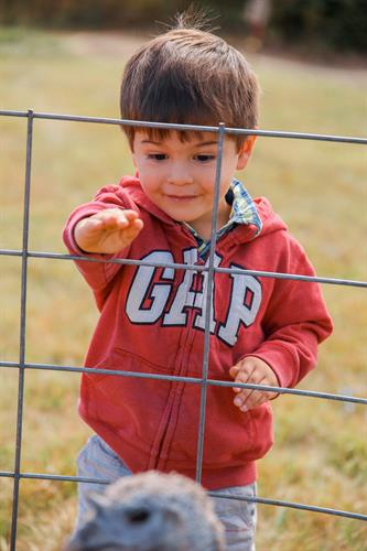 Gallery Image RS_Kid_turkey.jpg