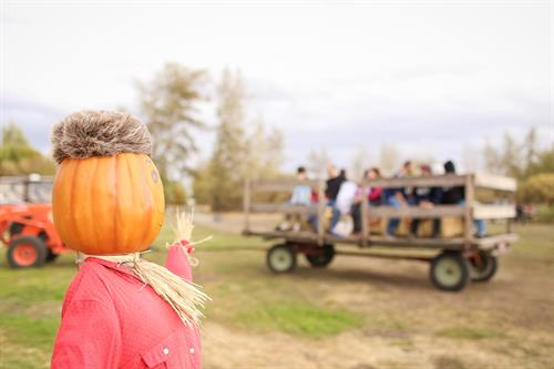 Gallery Image RS_hayride_scarecrow.jpg