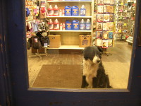 Our Store Mascot