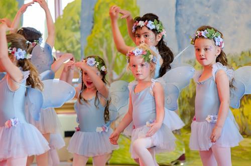 Spring Fairies- 4 Seasons Variations