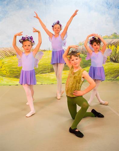 Spring fairies & Puck- 4 Seasons Variations
