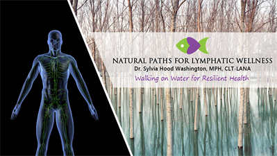 Natural Paths for Lymphatic Wellness