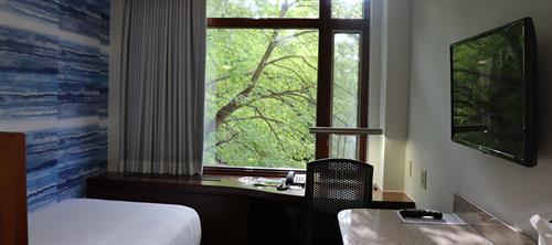 Gallery Image Standard_Room.JPG