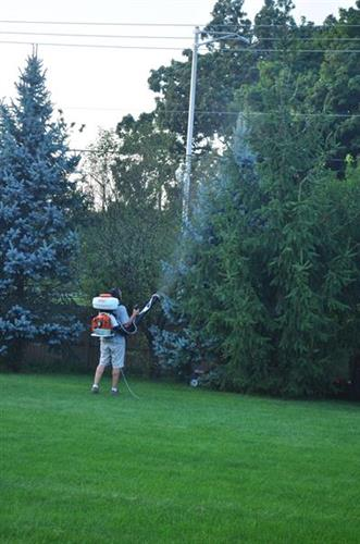 Matt spraying customers backyard