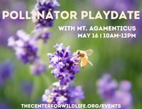 Center for Wildlife Pollinator Playdate with Mt. Agamenticus