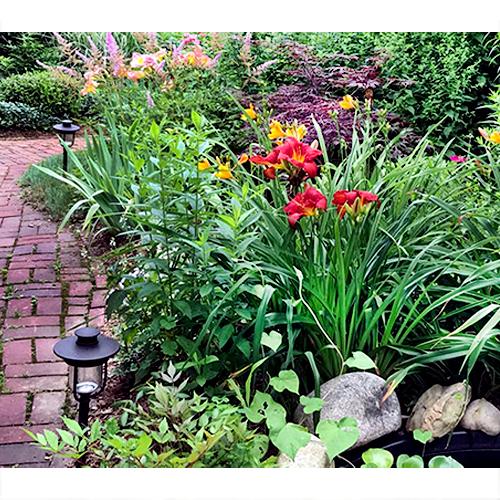 Gallery Image garden-path_copy.jpg
