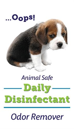 Pet Safe Odor Removal and Disinfection
