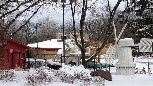 Gallery Image pool_in_snow.jpg