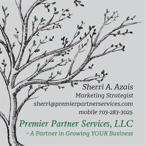 Premier Partner Services, LLC