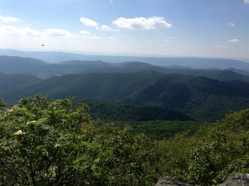 So many hikes in the Blue Ridge Mountains nearby!