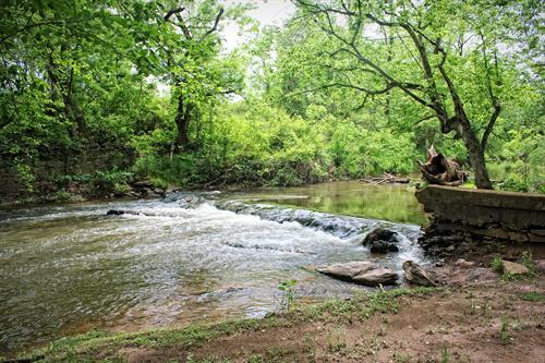 Mountain Run Creek at Lenn Park