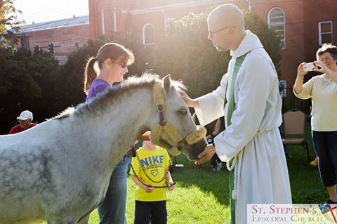 Annual Blessing of the Animals service every October